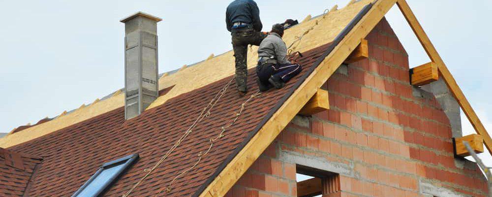 כל מה שחשוב לדעת על זיפות גגות